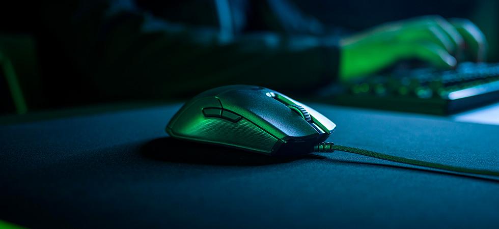 Лайфстайл фото мыши